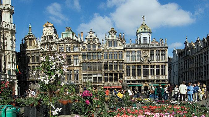 Netherlands/Belgium Tulips