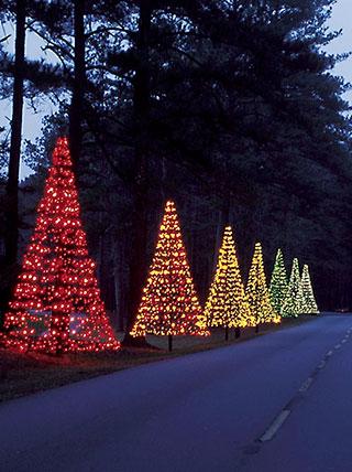 A Savannah Christmas Season Celebration