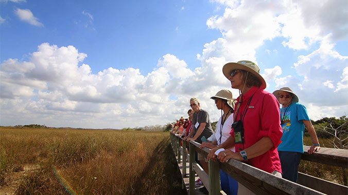 Keys and Everglades: Human and Natural History Outdoor Studies