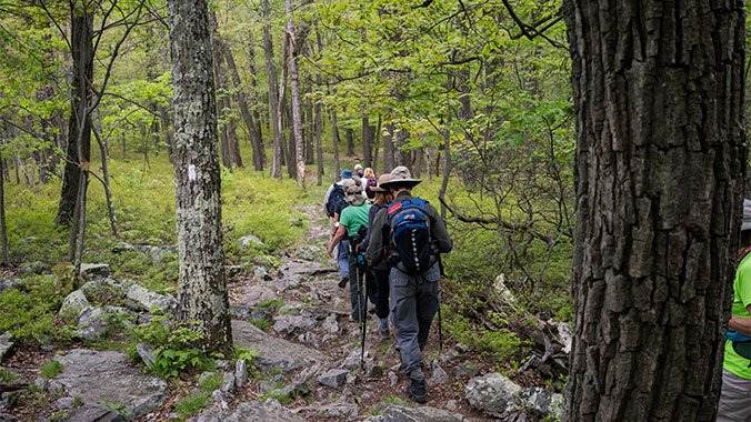 Hiking on the Appalachian Trail