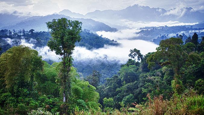 Extension: Wonders of Ecuador