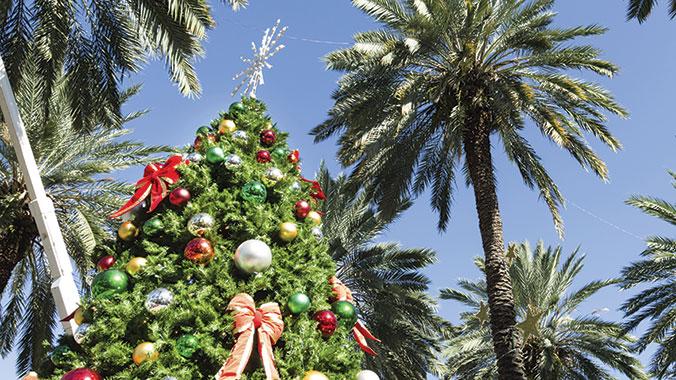20420 - A San Diego Christmas