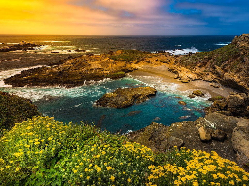 Point Lobos State Park, California